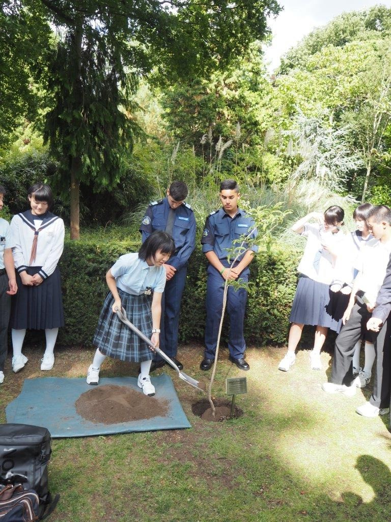 Junior high school students and RBKC Police Cadets help to plant a tree
